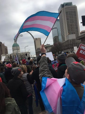 The scene in downtown St. Louis at the January 20 Women