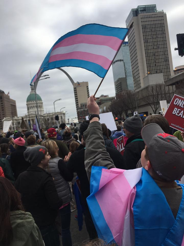 The scene in downtown St. Louis at the January 20 Women's March.